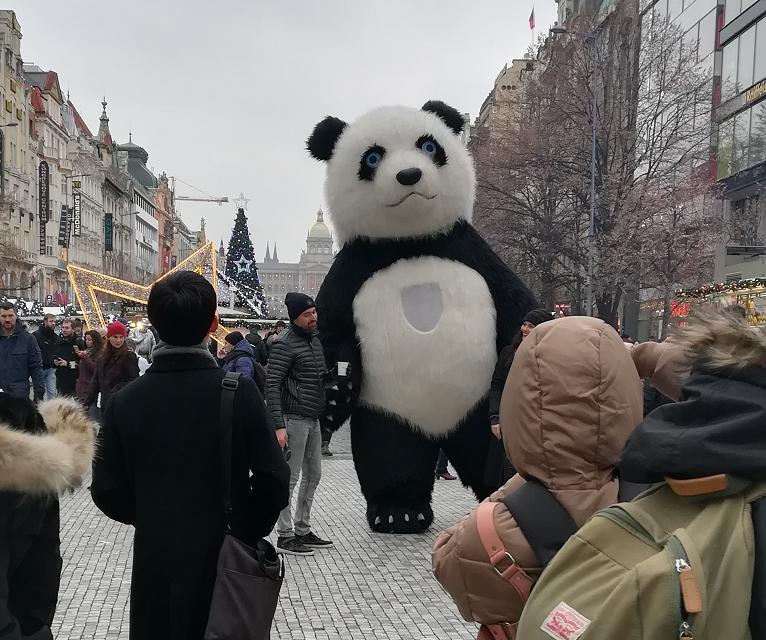 Medvědí trend před koncem roku pokračuje: Akcie jdou do kolenou
